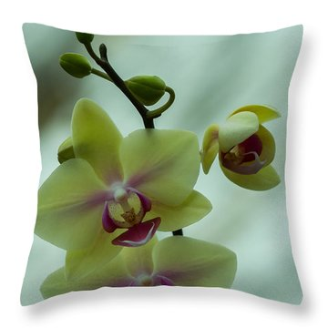 Blessed Blossom Throw Pillow