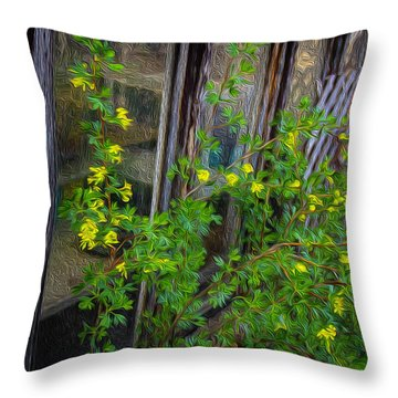 Blessed With Currents Throw Pillow