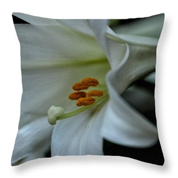Throw Pillow featuring the photograph Blessings  by Connie Handscomb