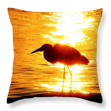 Throw Pillow featuring the photograph Blinded By The Light by Ola Allen