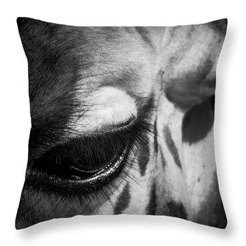 Blink Of An Eye Throw Pillow