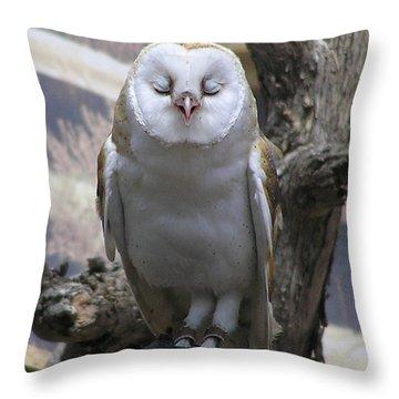 Blinking Owl Throw Pillow