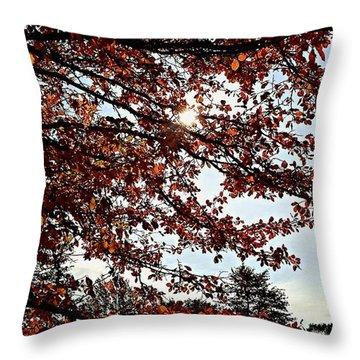 Blister  Throw Pillow by Jana E Provenzano