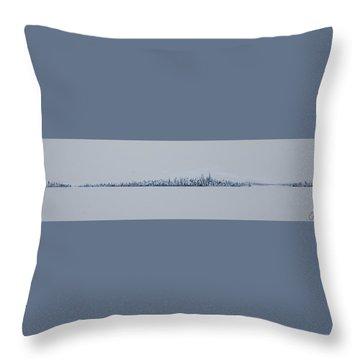 Blizzard 2011 Throw Pillow
