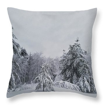 Blizzard In New England Throw Pillow