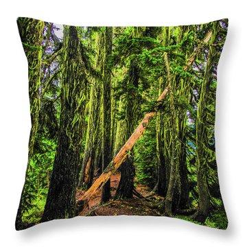 Blocked Trail Throw Pillow