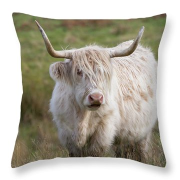 Throw Pillow featuring the photograph Blondie by Karen Van Der Zijden