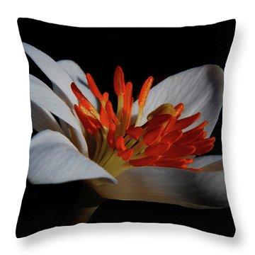 Bloodroot Art Throw Pillow
