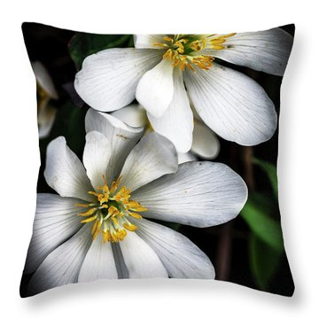 Throw Pillow featuring the photograph Bloodroot In Bloom by Thomas R Fletcher