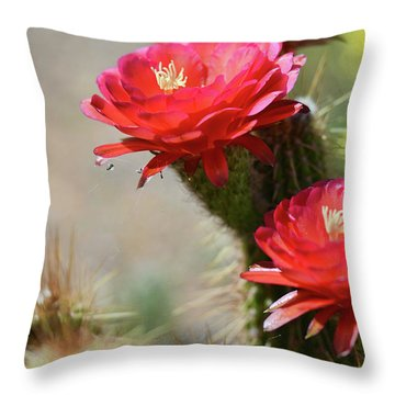 Throw Pillow featuring the photograph Bloomin' Cacti by Barbara Manis