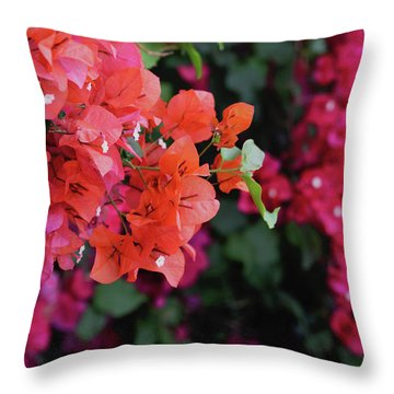 Blooming Bougainvillea- Photography By Linda Woods Throw Pillow