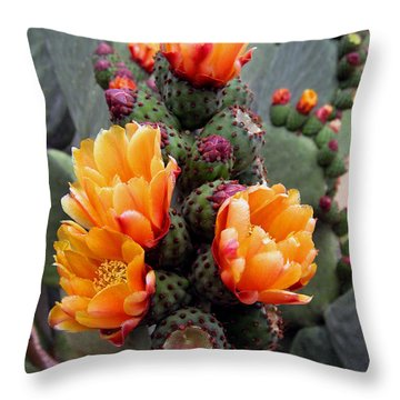 Blooming Cactus Throw Pillow by Harvie Brown