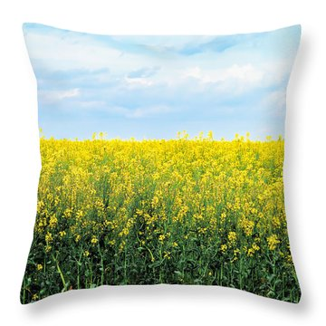 Blooming Canola - Photography Throw Pillow by Ann Powell
