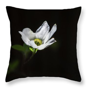 Blooming Dogwoods In Yosemite 3 Throw Pillow