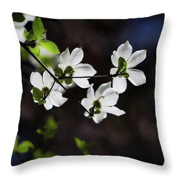 Blooming Dogwoods In Yosemite 4 Throw Pillow