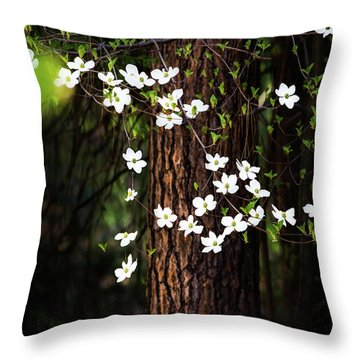 Blooming Dogwoods In Yosemite Throw Pillow