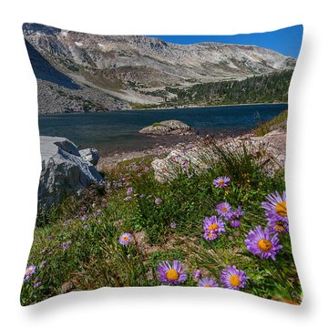 Blooming In Snowy Range Throw Pillow