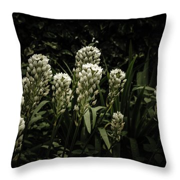 Throw Pillow featuring the photograph Blooming In The Shadows by Marco Oliveira