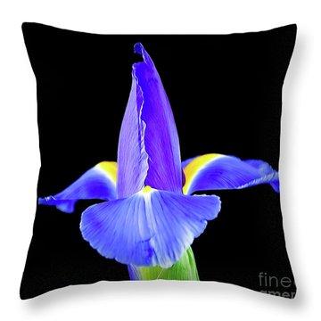 Blooming Iris 1318-1 Throw Pillow