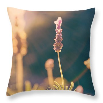 Throw Pillow featuring the photograph Blooming Lavender - Hipster Photo Square by Charmian Vistaunet