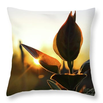 Blooming Lilac At Sunset Throw Pillow