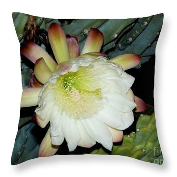 Blooming Night Cereus Throw Pillow