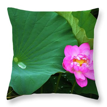Throw Pillow featuring the photograph Blooming Pink And Yellow Lotus Lily by Dennis Dame