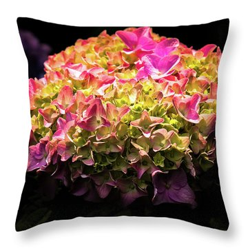 Blooming Pink Hydrangea Throw Pillow by Onyonet  Photo Studios