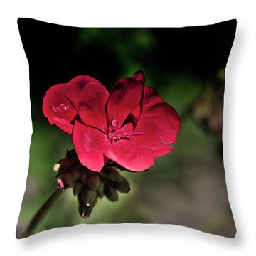 Blooming Red Geranium Throw Pillow