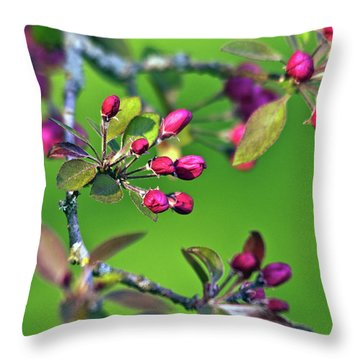 Blooming Spring Poetry Throw Pillow