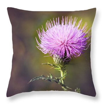 Blooming Thistle Throw Pillow