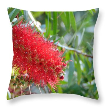 Blooms - Gulf State Park Throw Pillow