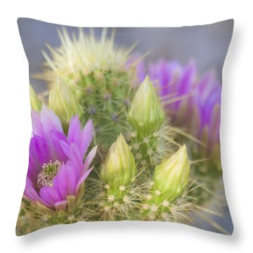 Blooms Of Spring Pink And Purple Throw Pillow