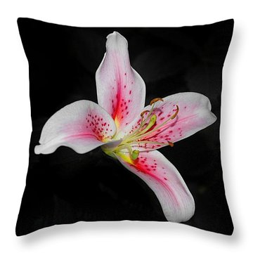 Blossom On Black Throw Pillow
