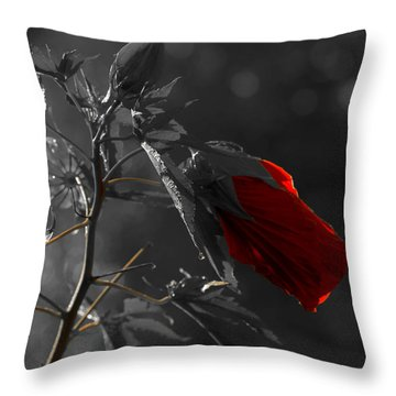 New Life Throw Pillow by Sherman Perry