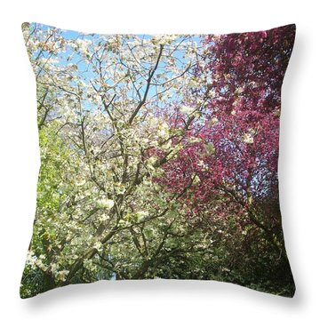 Blossom Trio Throw Pillow by Judith Desrosiers