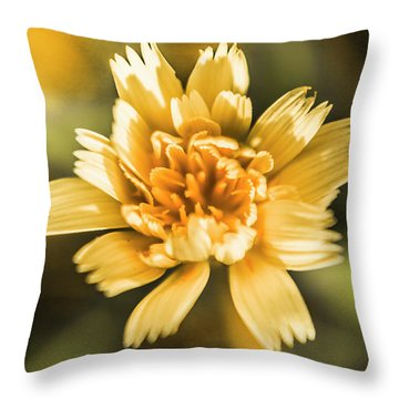 Blossoming Dandelion Flower Throw Pillow