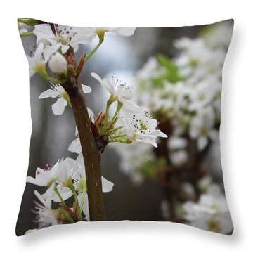 Blossoming Flowers Throw Pillow