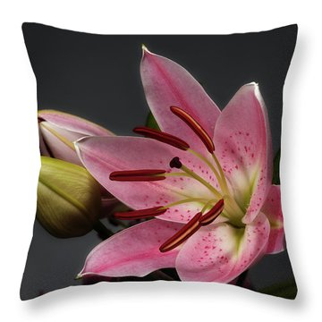 Blossoming Pink Lily Flower On Dark Background Throw Pillow