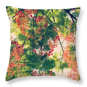 Throw Pillow featuring the photograph Blossoming Royal Poinciana Tree - Hipster Photo Square by Charmian Vistaunet