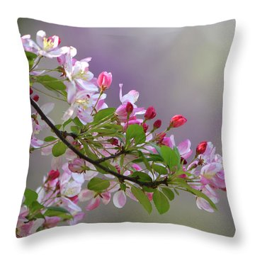 Throw Pillow featuring the photograph Blossoms And Bokeh by Ann Bridges