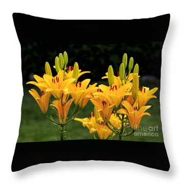 Blossoms And Buds Throw Pillow
