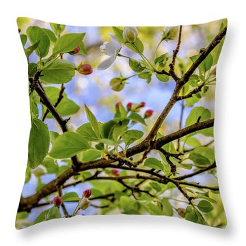 Blossoms And Leaves Throw Pillow