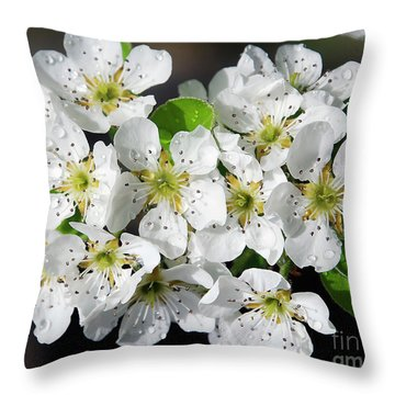 Throw Pillow featuring the photograph Blossoms by Elvira Ladocki