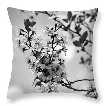 Blossoms In Black And White Throw Pillow by Sue Stefanowicz
