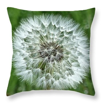 Blowin' In The Wind Throw Pillow