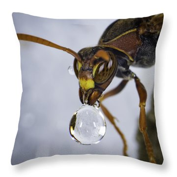 Throw Pillow featuring the photograph Blowing Bubbles by Chris Cousins