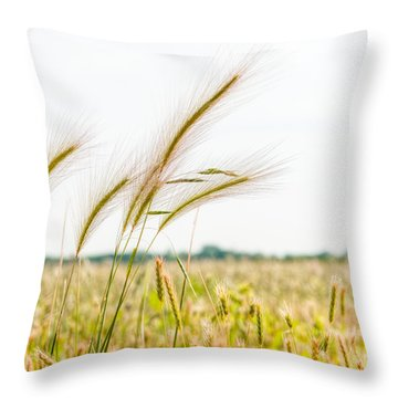 Blowing In The Wind  Throw Pillow by Alex Uhlarik