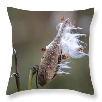 Blowing In The Wind Throw Pillow by Cindy Manero