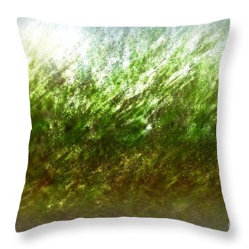 Throw Pillow featuring the photograph Blowing In The Wind by John Krakora